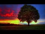 Исцеляющая музыка Рейки 432 Гц. Гармонизация сознания, восстановление энергии, очищение тела