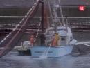1990 Мятежный танкер - Подводная одиссея команды Кусто