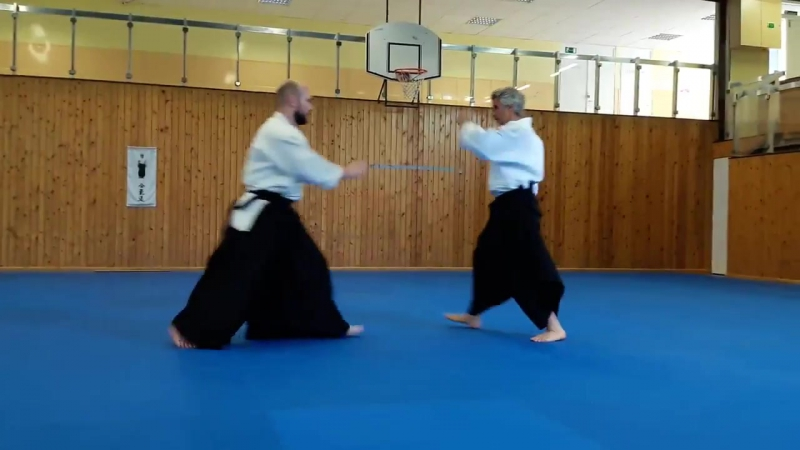 Aikido Kokyu nage Bruno Gonzalez budapest mai 2017 part 1