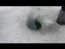 Хочешь увидеть больше заходи на канад в ютуб Fishing on Don НесСтар syoutube/channel/UCcBktU4kcpnG36yJXMJO10g