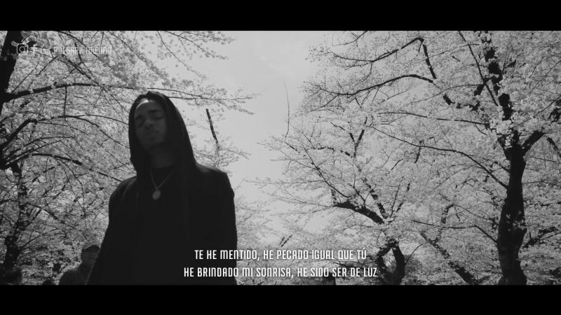 Una Flor - Ozuna (Video Oficial) (Con Letra) (By Poldark Hkenny)