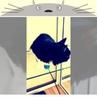 """Алексей Мирошин on Instagram: """"В catshotel96 стеклянные полки, кошкам удобно играть."""""""