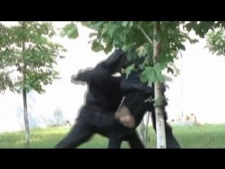 vk.com/biblioteka_trenirovok | рубрика по самообороне и боевому самбо. Урок 9