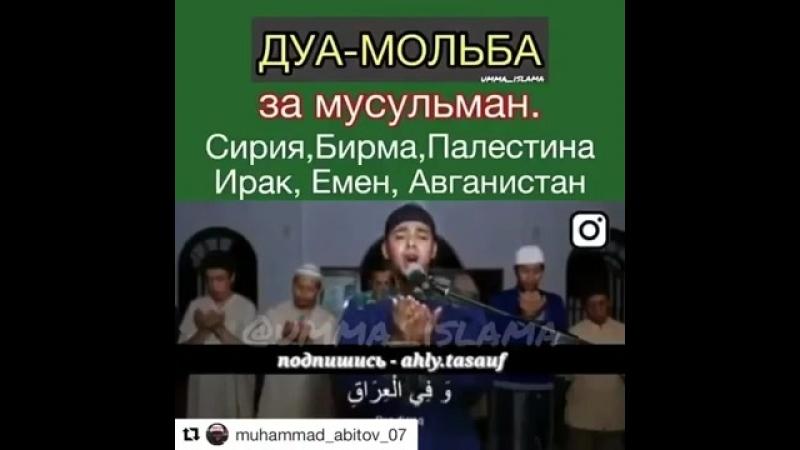 Дуа муджахида