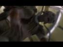Hondo Captures Ahsoka 1080p mp4