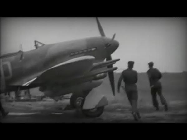 Typhoon pilot Albie Götze
