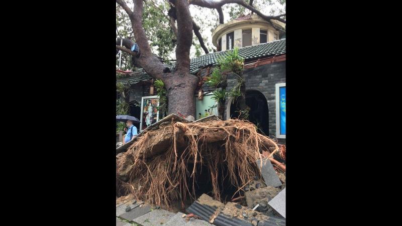 Nha Trang, Doc Let after typhoon.