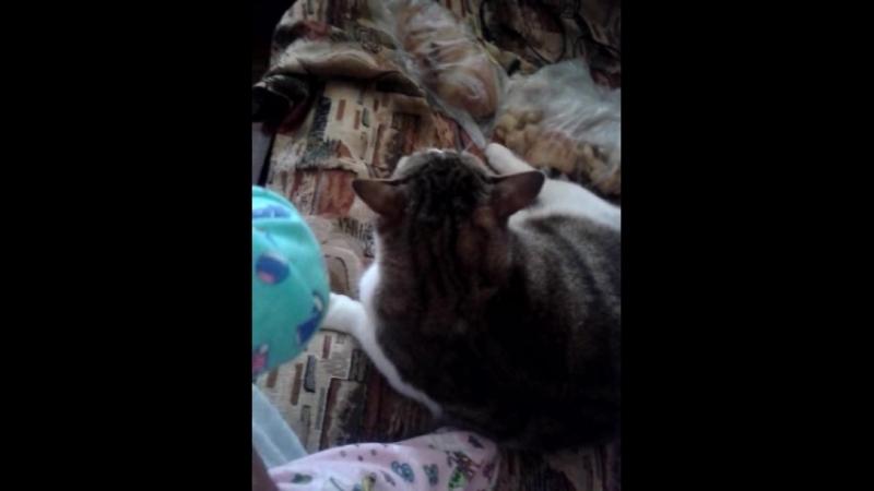 Video-2016-04-13-11-07-01.mp4