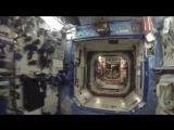 Видеоэкскурсия российского космонавта по МКС