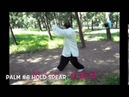 Liang BaGuaZhang Fixed Eight Palms.