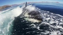 Orca chase in the Sea of de los Angeles Mexico