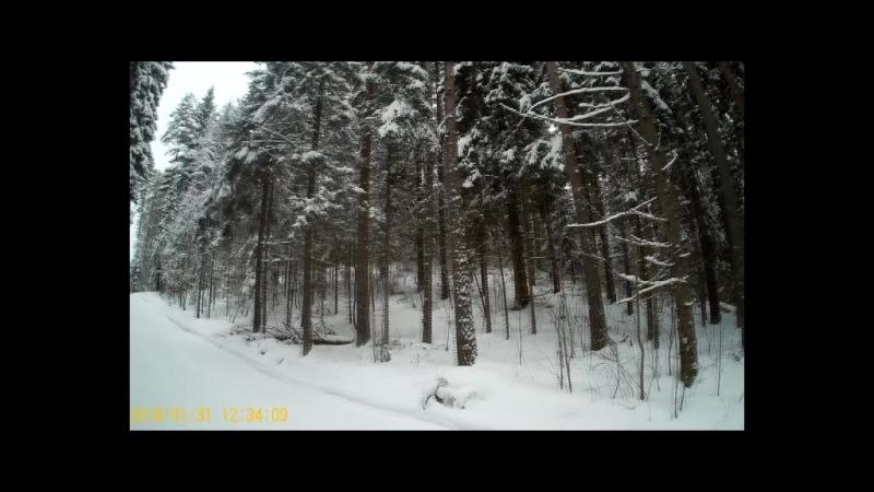 Первенство СЗФО по лыжным гонкам моими глазами. Сезон 2017/18