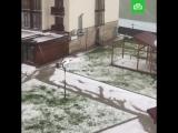 Гудаури в августе засыпало снегом