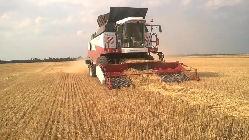 Комбайн Торум 780 с подборщиком пшеница Torum 780