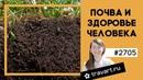Польза дождевых червей. Как повысить плодородие почвы. ТРАВАРТ 2705