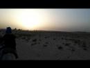 Карабли пустыни