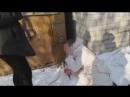 В Липецкой области школьницы избивали и унижали ровесницу, а мальчики снимали на видео
