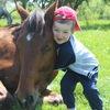 Конные прогулки и походы в Лазаревском ЧК Ярис