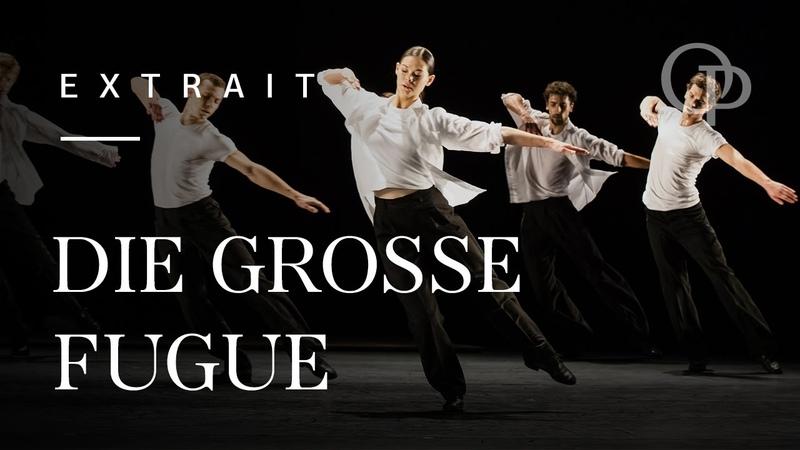 Die Grosse Fuge (Anne Teresa De Keersmaeker) - Extrait