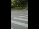Обратите внимания на это пешеходный переход вот уступают сдесь машины пешехода по улице декабристов остановка мжк