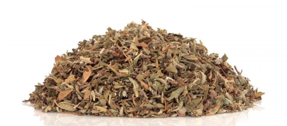 Травяная дамиана считается сексуальным стимулятором.