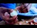 Пища Богов - Куриное яйцо, Брюква - Секреты кулинарии...
