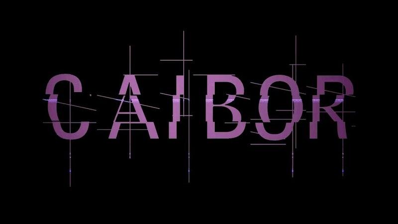 Caibor | E25 | Девять фрагов на взод