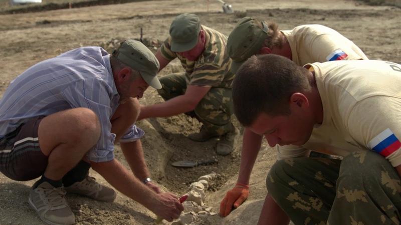 Скелет древнего кита нашли в районе Крымского моста