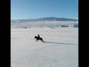 На чёрном коне по белым снегам Исландии