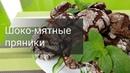Шоколадно мятные пряники Или как наполнить ароматом Лисий Дом