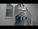 Второе рождение бассейна ВИФК бывшего СКА