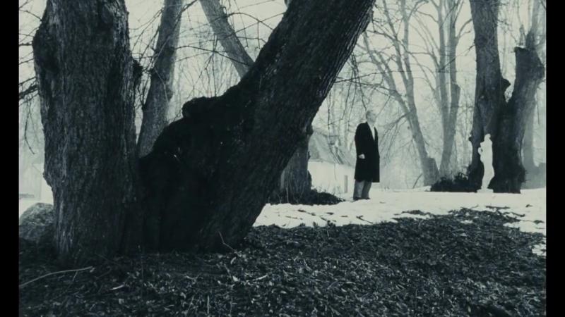 The Sacrifice - Andrei Tarkovsky - Re-Release Trailer