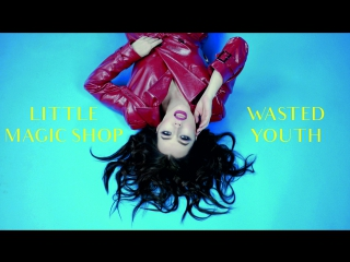 Little Magic Shop - Wasted Youth