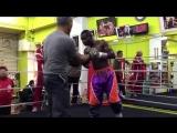 Guillermo Rigondeaux training-1.mp4
