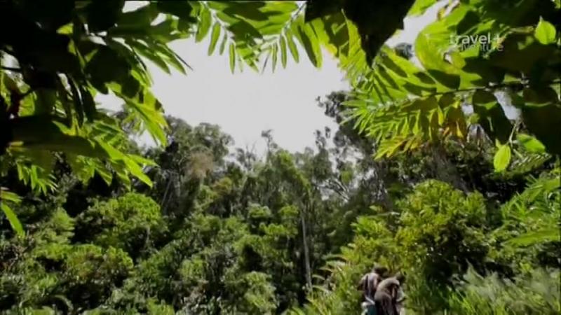 S02.E10 - Madagascar   Deadliest Journeys