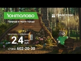 Енот Степан ЖК Юнтолово