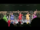 Team Syachihoko Syachi Nobori at Makuhari Messe Event Hall Day 2 1
