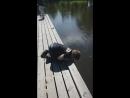 в Котке Финляндия