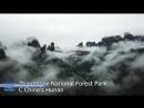 Фантастические горы «Аватара» в Китае