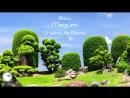 Akku - Megumi (DreamLife Remix) [Teaser]