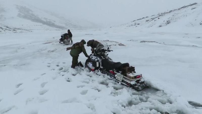 Поиски снежного барса на нагорье Сангилен в Туве