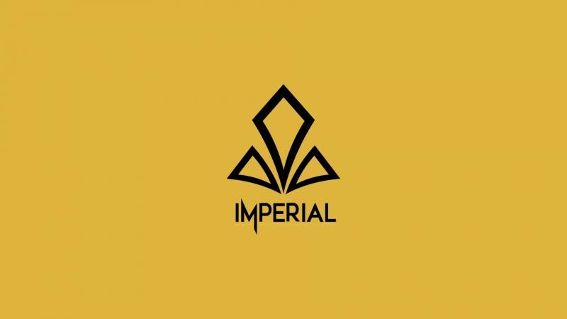 Полуфинал DreamHack Open Summer: Gambit Esports vs Imperial
