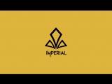 Полуфинал DreamHack Open Summer Gambit Esports vs Imperial