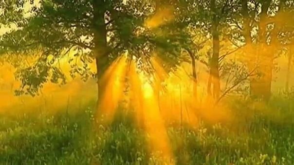 с добрым утром, друзья! лето продолжается, значит продолжаются яркоцветочные, солнечнозагарательные, ягодноароматные, морскиебризовые,небеснолучистые.... - отпускканикульноотдыхательные дни)...и пусть они будут самыми счастливыми для вас! всех благ