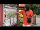 Филипп Киркоров с детьми Аллой-Викторией в зоопарке Майами