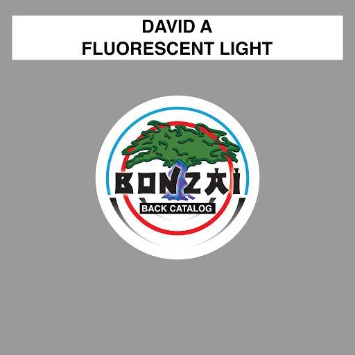David A альбом Fluorescent Light