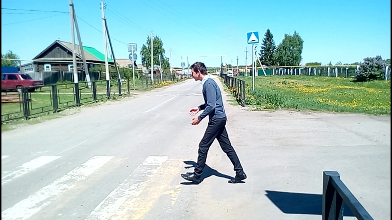 В Лебяжинской школе Мелекесского района отряд Ю. и Д. проводит пропаганду безопасности дорожного движения