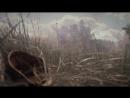 Полевая медсестричка - Остап Шатуновский, видео- Анастасия Ластович