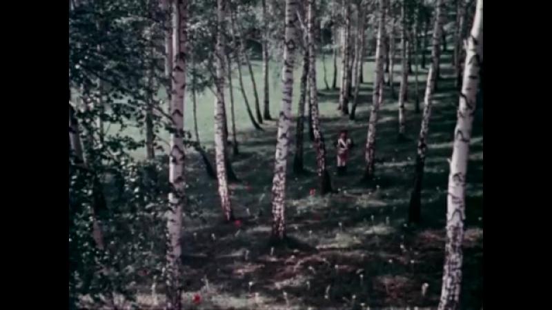 Очень красивый фильм-сказка Марья-искусница _ 1959.mp4-.mp4