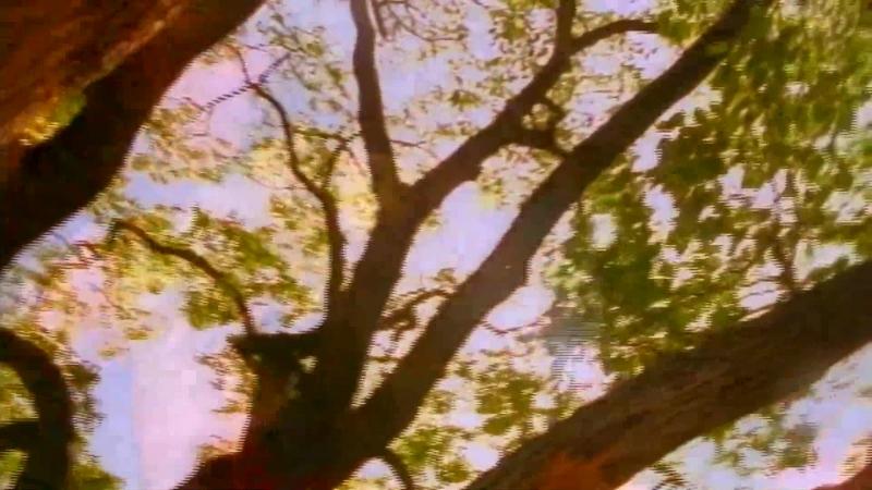 Skid Row - Quicksand Jesus (Official Music Video)